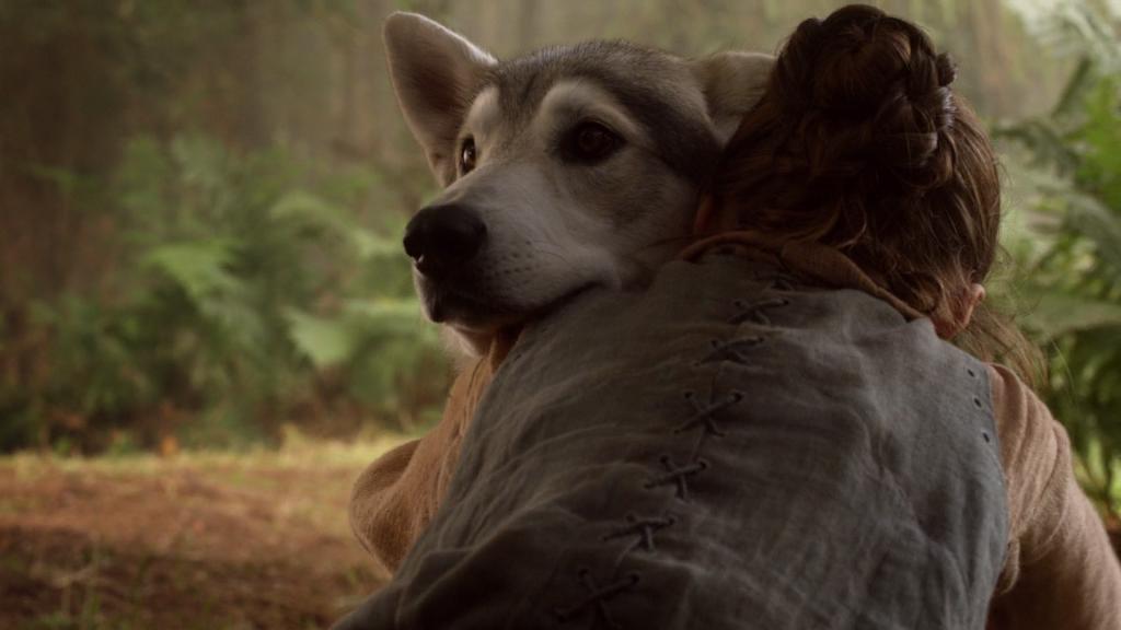 arya hugging nymeria