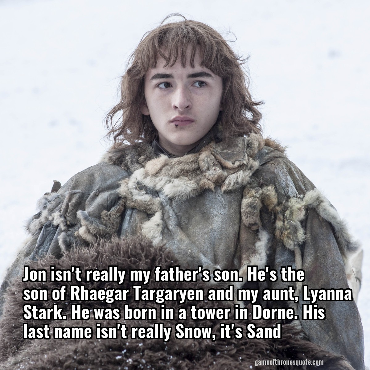Jon isn't really my father's son. He's the son of Rhaegar Targaryen and my aunt, Lyanna Stark. He was born in a tower in Dorne. His last name isn't really Snow, it's Sand