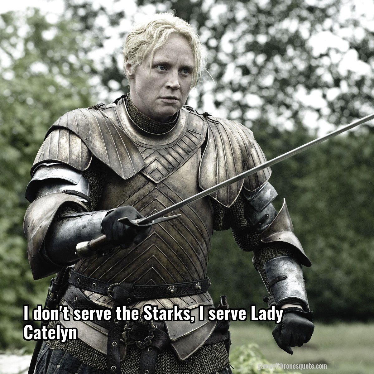I don't serve the Starks, I serve Lady Catelyn