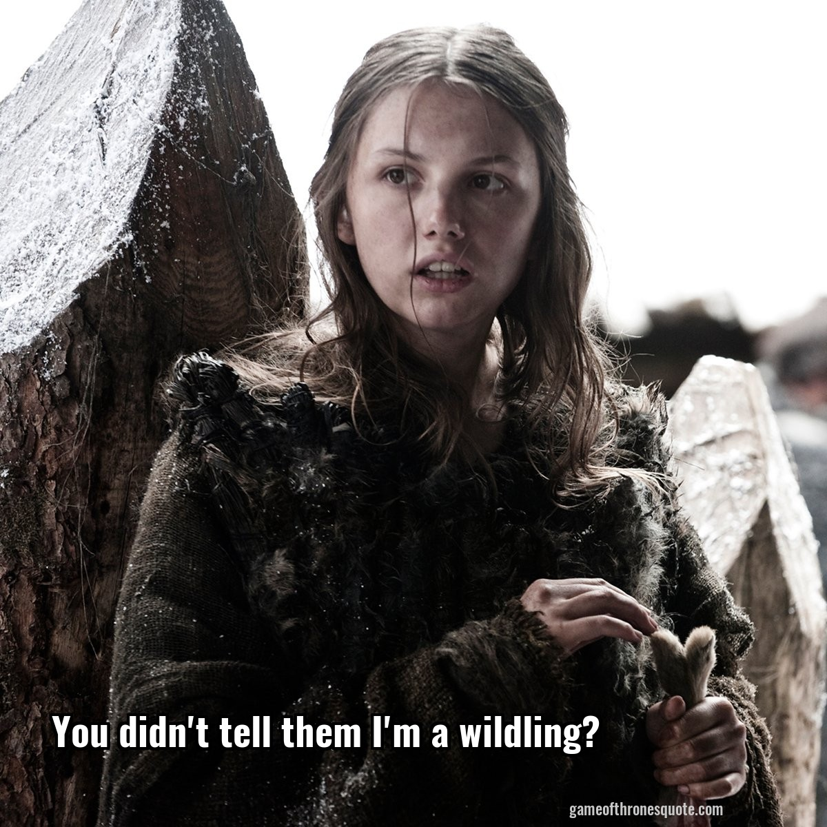 You didn't tell them I'm a wildling?