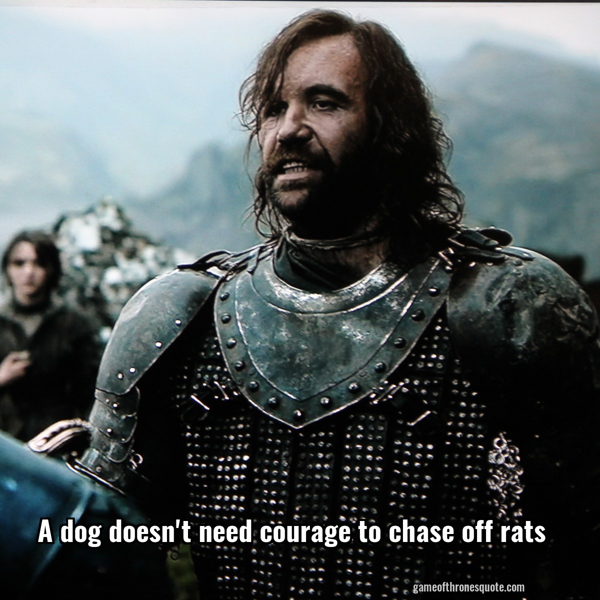 A dog doesn't need courage to chase off rats